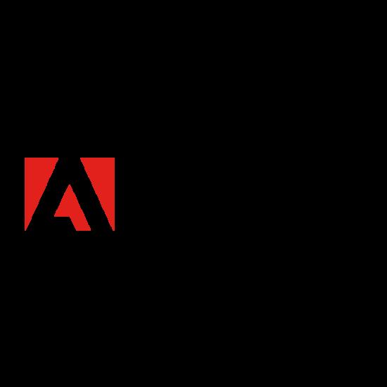 Adobe Illustrator CS5 for windows